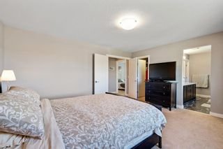 Photo 31: 145 Rainbow Falls Heath: Chestermere Detached for sale : MLS®# A1120150