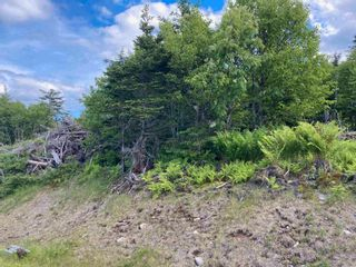Photo 22: Lot 102 Point Road in Clam Bay: 35-Halifax County East Vacant Land for sale (Halifax-Dartmouth)  : MLS®# 202116103