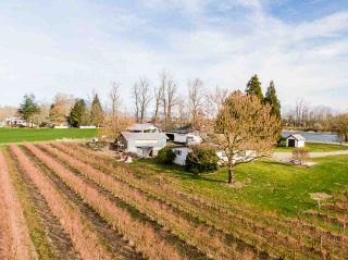 Photo 18: 41393 TAYLOR Road in Mission: Dewdney Deroche House for sale : MLS®# R2540392