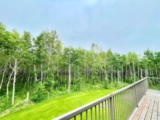 Photo 31: 205 Whitetail Road in Brandon: BSW Residential for sale : MLS®# 202103787