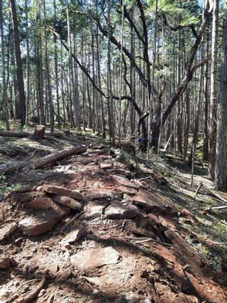 Photo 3: Lot 162 Halibut Hill Rd in : Isl Mudge Island Land for sale (Islands)  : MLS®# 871858
