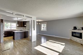 Photo 13: 4604 Maryvale Drive NE in Calgary: Marlborough Detached for sale : MLS®# A1090414