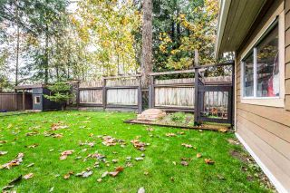 Photo 20: 2497 WOODPARK Place in Abbotsford: Central Abbotsford House for sale : MLS®# R2318713