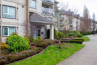 "Photo 10: 417 8142 120A Street in Surrey: Queen Mary Park Surrey Condo for sale in ""STERLING COURT"" : MLS®# R2438691"