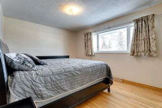 Photo 16: 119 Thorncrest Road NW in Calgary: Thorncliffe Detached for sale : MLS®# A1067750