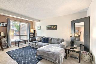 Photo 3: 48 1155 Falconridge Drive NE in Calgary: Falconridge Row/Townhouse for sale : MLS®# A1134743