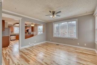 Photo 25: 355 Whitman Place NE in Calgary: Whitehorn Detached for sale : MLS®# A1046651