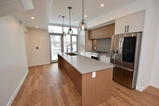 Photo 3: 3 761 North Drive in Winnipeg: East Fort Garry Condominium for sale (1J)  : MLS®# 202101242