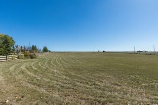 Photo 4: 370181 128 Street E: Rural Foothills County Detached for sale : MLS®# A1148186