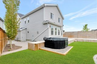Photo 42: 125 COPPERPOND Green SE in Calgary: Copperfield Detached for sale : MLS®# C4299427