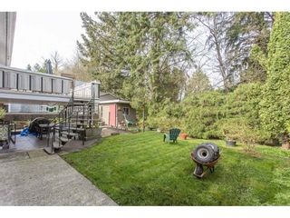 Photo 37: 12387 MOODY Street in Maple Ridge: West Central House for sale : MLS®# R2258400