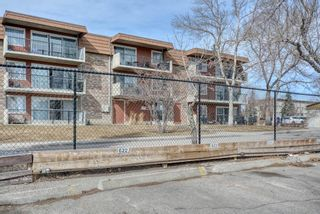 Photo 35: 306 315 Heritage Drive SE in Calgary: Acadia Apartment for sale : MLS®# A1090556
