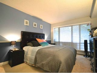 Photo 8: # 105 2277 MCGILL ST in Vancouver: Hastings Condo for sale (Vancouver East)  : MLS®# V1054708