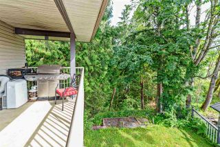 Photo 17: 32429 HASHIZUME Terrace in Mission: Mission BC House for sale : MLS®# R2383800
