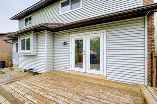 Photo 40: 23 Castlefall Way NE in Calgary: Castleridge Detached for sale : MLS®# A1141276