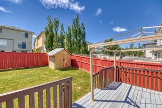 Photo 41: 23 Citadel Meadow Grove NW in Calgary: Citadel Detached for sale : MLS®# A1149022
