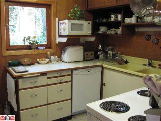 Photo 6: 19616 80TH AV in Langley: House for sale : MLS®# F1020546