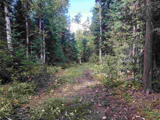 """Photo 8: DL 1599 W 16 Highway in Prince George: Lafreniere Land for sale in """"LAFRENIERE"""" (PG City South (Zone 74))  : MLS®# R2508129"""
