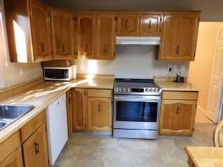 Photo 11: 6306 187 Street in Edmonton: Zone 20 House for sale : MLS®# E4266313