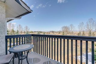 Photo 22: 242078 98 Street E: Rural Foothills County Detached for sale : MLS®# A1093852