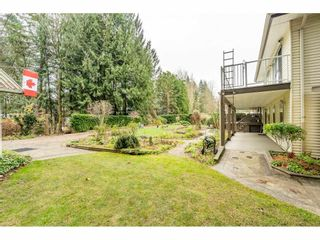 """Photo 36: 24322 55 Avenue in Langley: Salmon River House for sale in """"Salmon River"""" : MLS®# R2522391"""