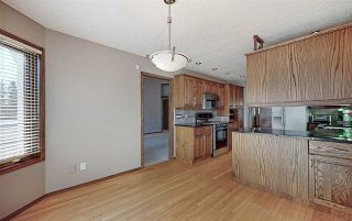 Photo 13: 200 COUNTRY CLUB Point in Edmonton: Zone 22 Attached Home for sale : MLS®# E4236589