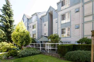 Photo 19: 305 7465 SANDBORNE Avenue in Burnaby: South Slope Condo for sale (Burnaby South)  : MLS®# R2257682