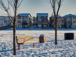 Photo 44: 121 VALLEYVIEW Court SE in Calgary: Dover Detached for sale : MLS®# C4287346