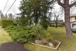 Photo 4: 13807 79 Avenue in Surrey: East Newton House for sale : MLS®# R2534559