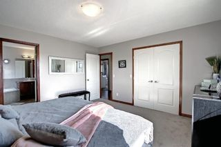 Photo 31: 176 WILLOWMERE Way: Chestermere Detached for sale : MLS®# A1153271