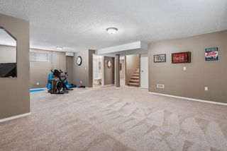Photo 25: 296 Mt. Brewster Circle SE in Calgary: McKenzie Lake Detached for sale : MLS®# A1118914