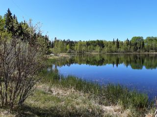 Photo 48: 336235 Leisure Lake Drive W: Rural Foothills County Detached for sale : MLS®# A1117903