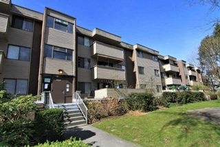 """Photo 17: 23 2444 WILSON Avenue in Port Coquitlam: Central Pt Coquitlam Condo for sale in """"ORCHARD"""" : MLS®# R2247251"""