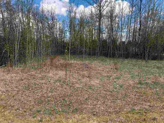 Photo 1: 97-15065 Twp Rd 470: Rural Wetaskiwin County Rural Land/Vacant Lot for sale : MLS®# E4243872