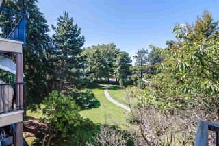 "Photo 33: 217 8860 NO. 1 Road in Richmond: Boyd Park Condo for sale in ""Apple Green Park"" : MLS®# R2529373"