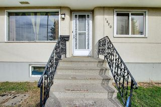 Main Photo: 1820 41 Street SE in Calgary: Forest Lawn Detached for sale : MLS®# A1094216