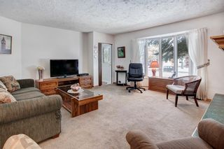 Photo 8: 119 35 Street NW in Calgary: Parkdale Detached for sale : MLS®# A1085118