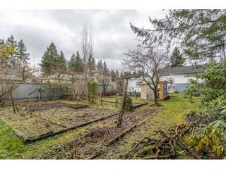 Photo 37: 622 SCHOOLHOUSE Street in Coquitlam: Central Coquitlam House for sale : MLS®# R2531775