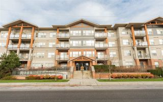 """Photo 17: 212 20219 54A Avenue in Langley: Langley City Condo for sale in """"Suede"""" : MLS®# R2273504"""