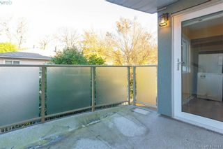Photo 19: 207 2710 Grosvenor Rd in VICTORIA: Vi Oaklands Condo for sale (Victoria)  : MLS®# 801865