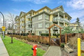 Photo 35: 411 5020 221A STREET in Langley: Murrayville Condo for sale : MLS®# R2524259