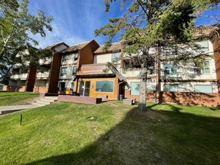 Main Photo: 206 1712 38 Street SE in Calgary: Forest Lawn Apartment for sale : MLS®# A1116212
