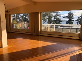 """Photo 11: 14887 HARDIE Avenue: White Rock House for sale in """"White Rock"""" (South Surrey White Rock)  : MLS®# R2509233"""