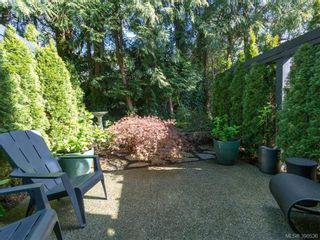 Photo 4: 5 1234 Johnson St in VICTORIA: Vi Downtown Row/Townhouse for sale (Victoria)  : MLS®# 784942