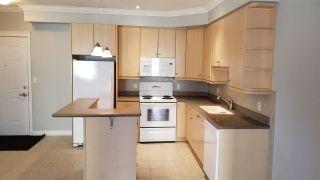 Photo 5: 313 10116 80 Avenue in Edmonton: Zone 17 Condo for sale : MLS®# E4229427