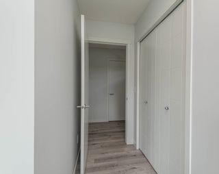 Photo 12: 22327 93 Avenue in Edmonton: Zone 58 House for sale : MLS®# E4260053