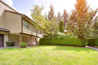 Photo 18: 6 9151 FOREST GROVE DRIVE in Burnaby: Forest Hills BN Townhouse for sale (Burnaby North)  : MLS®# R2426367
