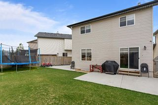 Photo 37: 228 Covemeadow Court NE in Calgary: Coventry Hills Detached for sale : MLS®# A1118644