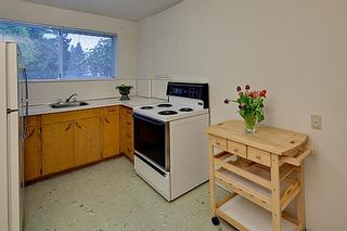 Photo 17: 830 E 29TH Street in North Vancouver: Lynn Valley House for sale : MLS®# V934540