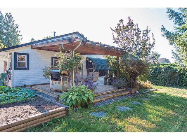 """Photo 15: Photos: 11995 238B Street in Maple Ridge: Cottonwood MR House for sale in """"Cottonwood"""" : MLS®# V1140226"""
